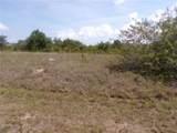 13574 Allamanda Circle - Photo 2