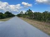 Delong Avenue - Photo 46