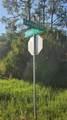 1133 Campagna Lane - Photo 2