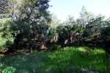 27171 San Pablo Drive - Photo 3