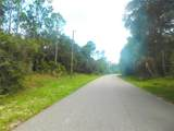 Ananas Road - Photo 10