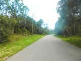 Ananas Road - Photo 11
