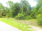Ananas Road - Photo 12