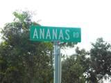 Ananas Road - Photo 19