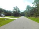 Ananas Road - Photo 7
