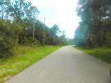 Ananas Road - Photo 8
