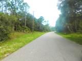 Ananas Road - Photo 9