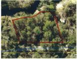 34170 Ringwalt Drive - Photo 1