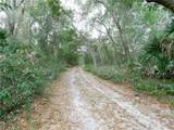 28935 State Road 44 - Photo 21