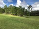 35701 Panther Ridge Road - Photo 4