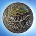 2287 Fringe Tree Trail - Photo 60