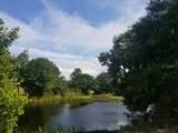 Pine Island Road - Photo 3