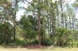 Lot 15 & 16 Vitex Avenue - Photo 3