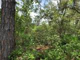Royal Trails - Photo 3