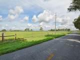 Wiygul Road - Photo 8