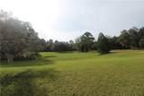 Big Pine Island Drive - Photo 14