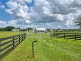 13729 County Road 103 - Photo 7