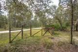 5471 Satin Terrace - Photo 40