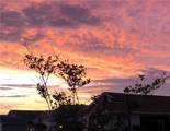 5839 Howell Terrace - Photo 22