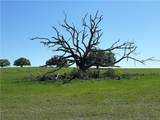 12447 County Road 561 - Photo 1
