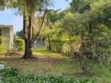 164 Royal Palm Drive - Photo 16