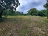 Tree Frog Lane - Photo 4
