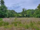 Tree Frog Lane - Photo 5
