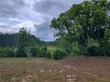 Tree Frog Lane - Photo 6