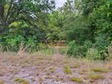 Tree Frog Lane - Photo 12