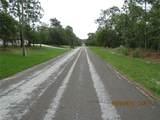 3502 Brazilnut Road - Photo 5