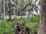 Florida Avenue - Photo 1
