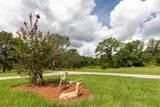 26920 Anderson Ranch Road - Photo 49