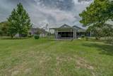 28823 Williams Woods Road - Photo 3