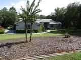 1820 Begonia Drive - Photo 2