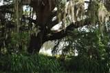 Florida Boys Ranch Road - Photo 8