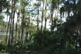 Florida Boys Ranch Road - Photo 9