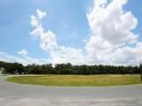 34933 Golden Tree Drive - Photo 5