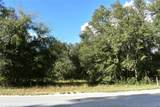 Lake Griffin Road - Photo 2