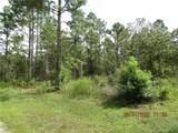 3541 Pine Valley Loop - Photo 1