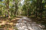 241 Indian Lakes Forest Road - Photo 13