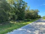 000 Azalea Avenue - Photo 5