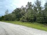 TBD Homestead Circle - Photo 1