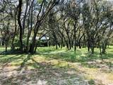 3120 Tiger Creek Forest - Photo 2