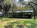 3120 Tiger Creek Forest - Photo 4