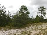 Woodstork Way - Photo 2