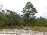 Woodstork Way - Photo 3
