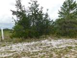 Woodstork Way - Photo 4