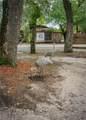14708 Camp Mack Road - Photo 81