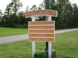 Oleander Drive - Photo 6
