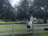 3824 White Oak Court - Photo 35